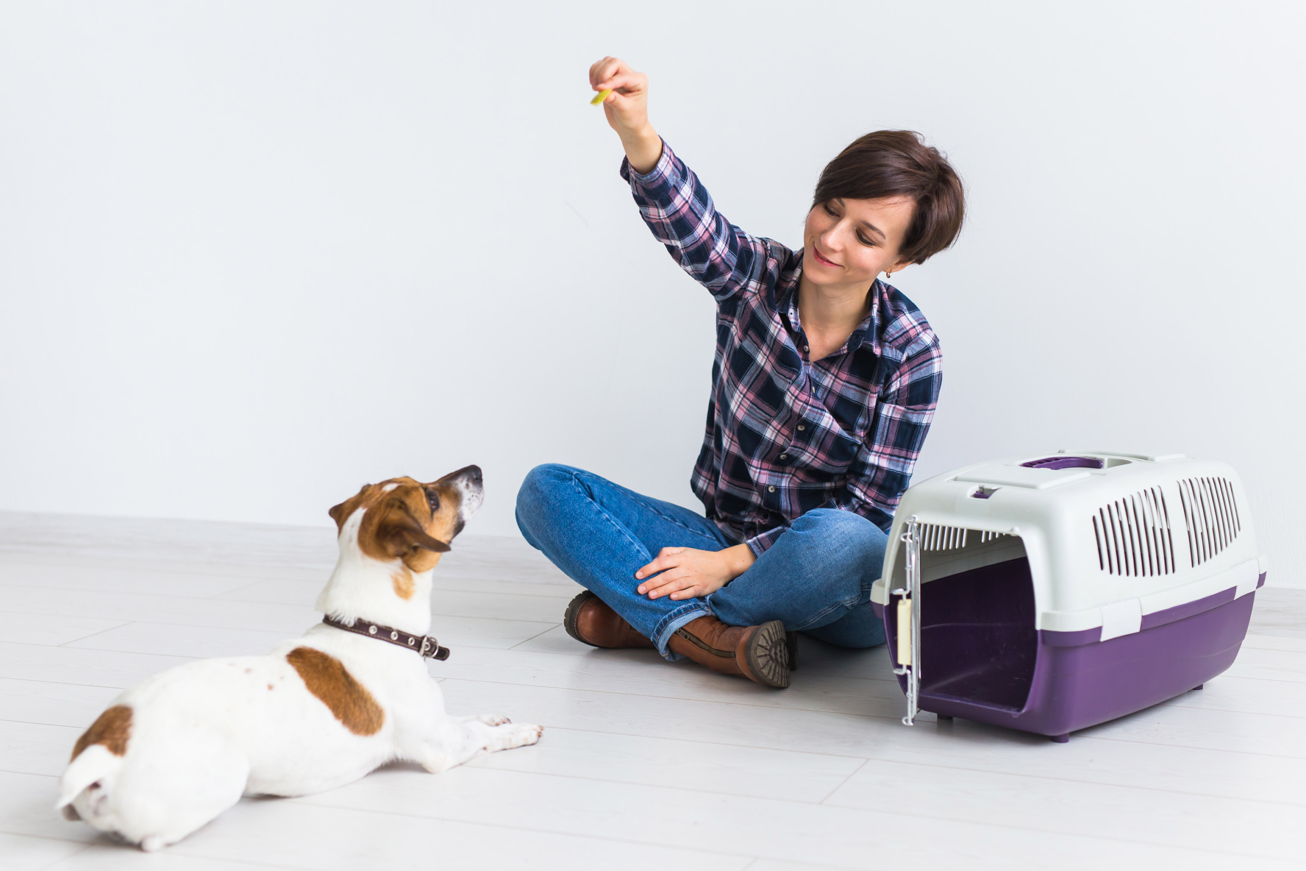 The Scientific Benefits of Owning a Dog & How Telepet Can Help